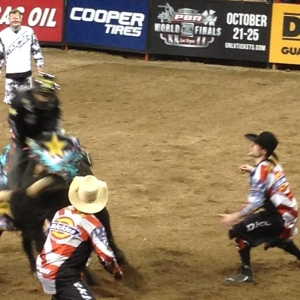 35 Bullfighters to the rescue